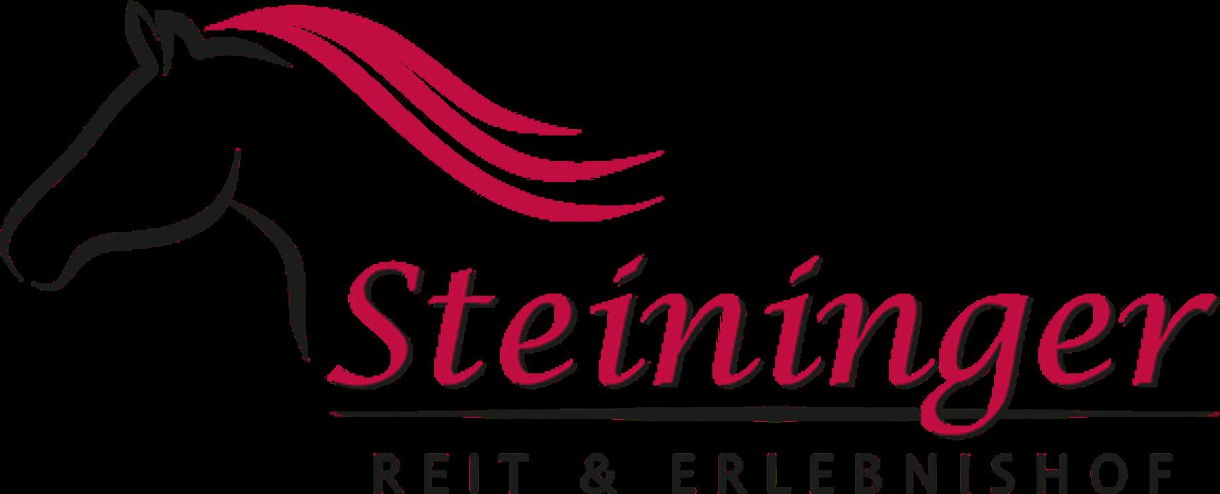 Bild zu Reitschule Steininger in Rottenburg an der Laaber