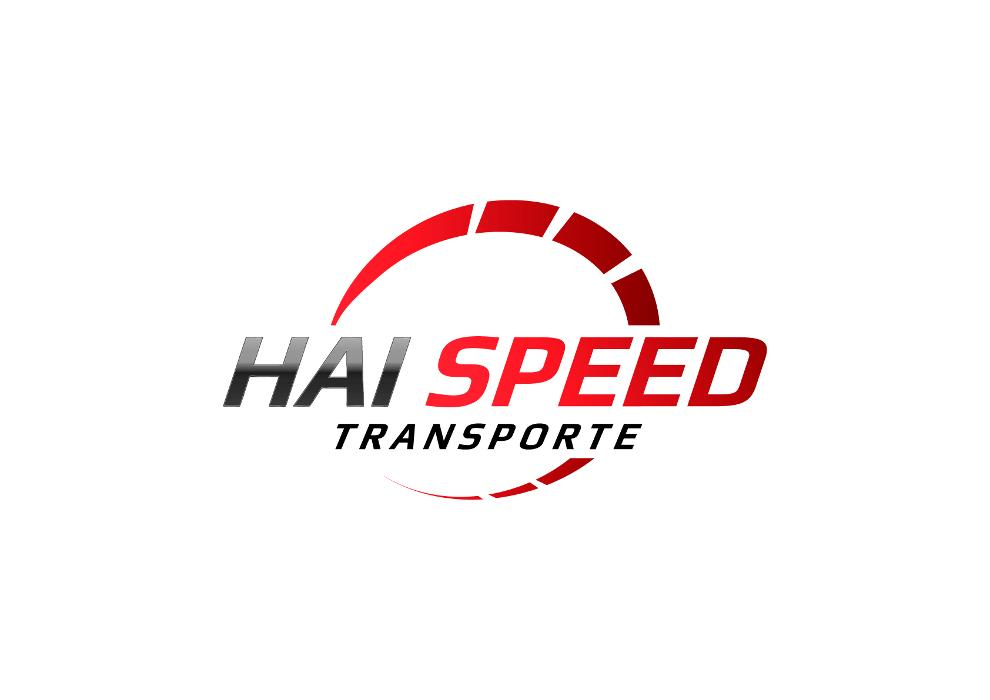 Bild zu HAI Speed Transporte in Hannover
