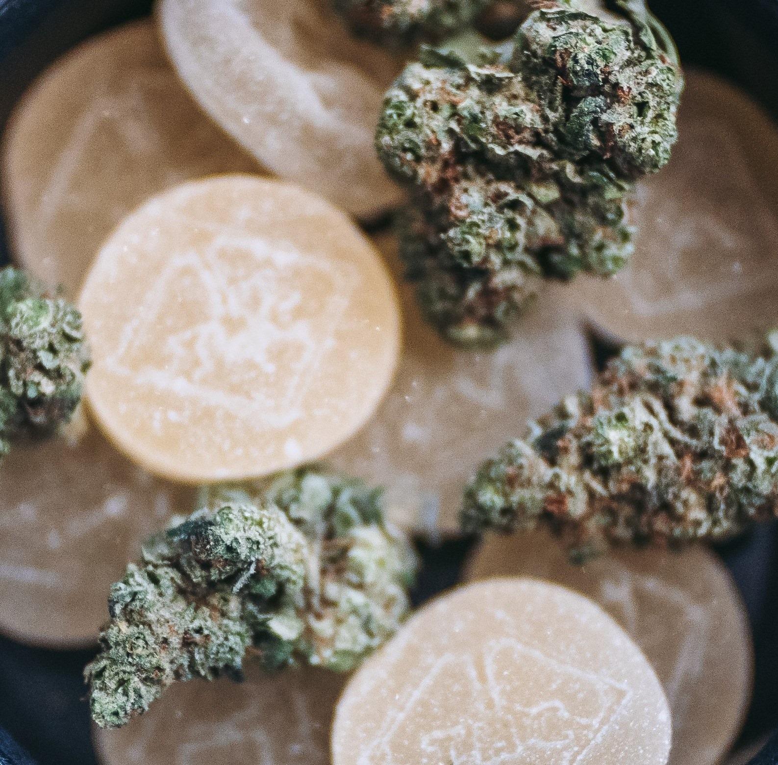 FLUENT Cannabis Dispensary - Panama City