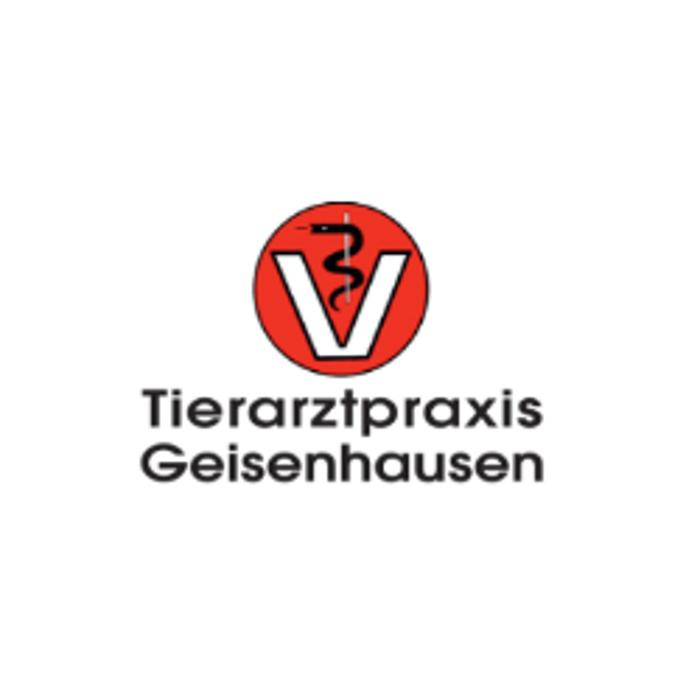 Bild zu Tierarztpraxis Geisenhausen GbR in Geisenhausen