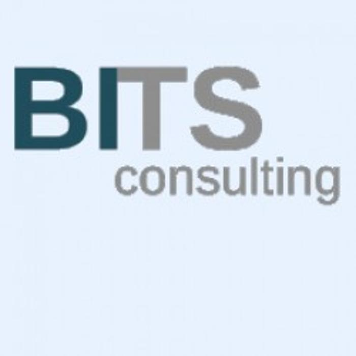 Bild zu BITS Consulting GmbH in München
