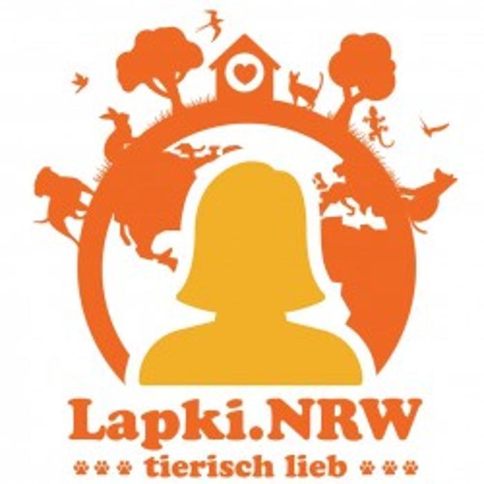 Bild zu Hundeschule Lapki mit Tagesbetreuung in Düsseldorf