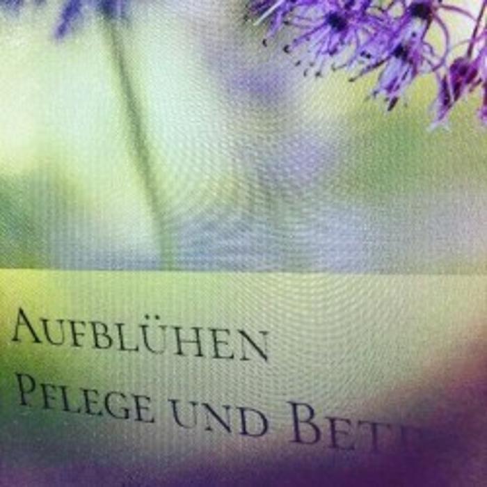 Bild zu Aufblühen GmbH in Düsseldorf
