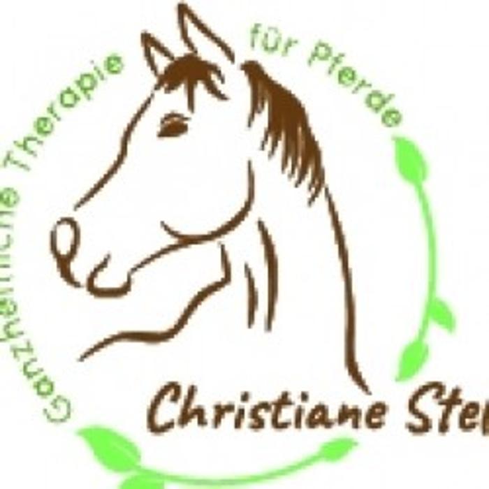 Bild zu Christiane Steffens Ganzheitliche Therapie für Pferd und Hund in Lüdenscheid