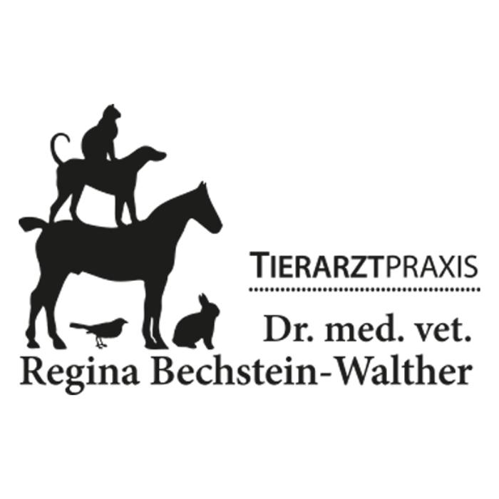 Bild zu Dr. med. vet. Regina Bechstein-Walther Tierarztpraxis in Friedberg in Hessen