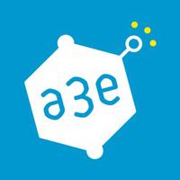 A3E CONSULTING Autres services