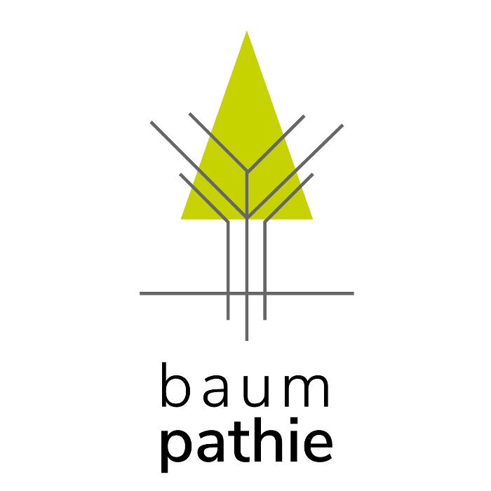 Bild zu Baumpathie - Baumpflege & Baumklettern in München