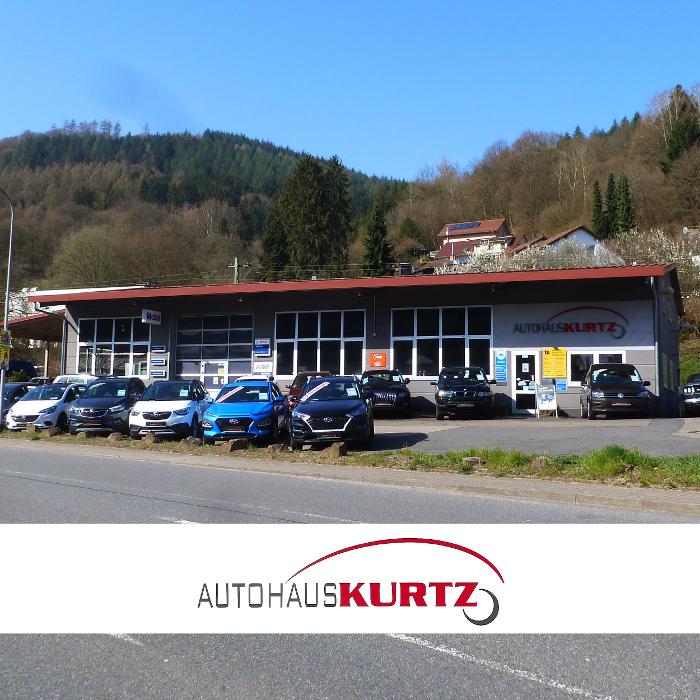 Bild zu Autohaus Kurtz in Hirschhorn am Neckar