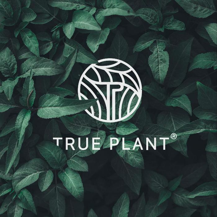Bild zu True Plant in Solingen