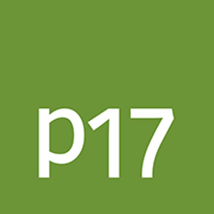 Bild zu p17 GmbH in Gronau in Westfalen