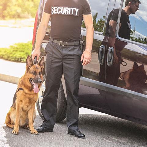 C.Q.F.S. SECURITE