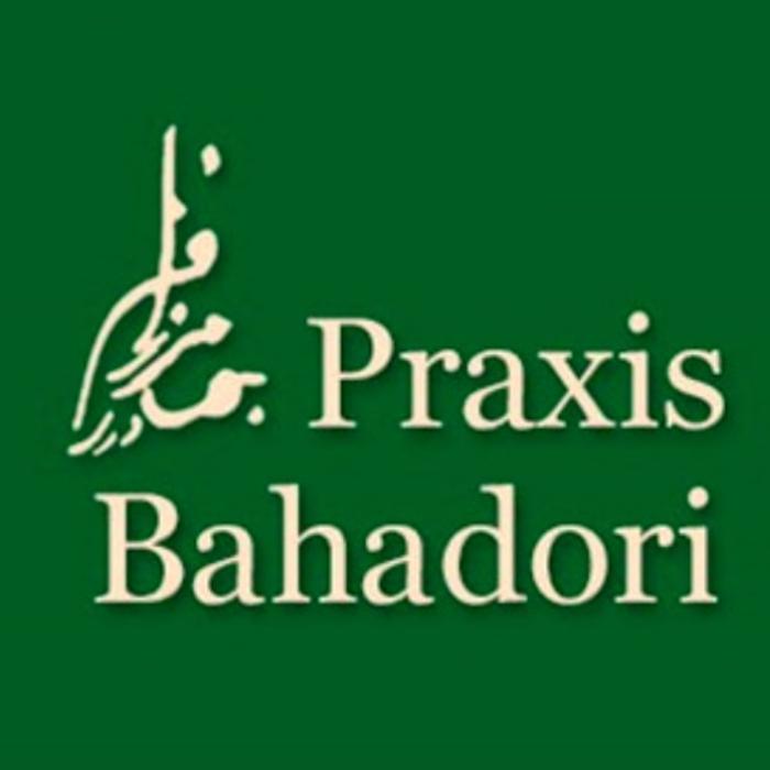 Bild zu Faramarz Bahadori Praxis für Physiotherapie in Gerolstein