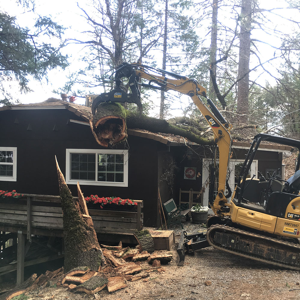 Bundy's Tree Service - Redding, CA 96001 - (530)515-3766 | ShowMeLocal.com