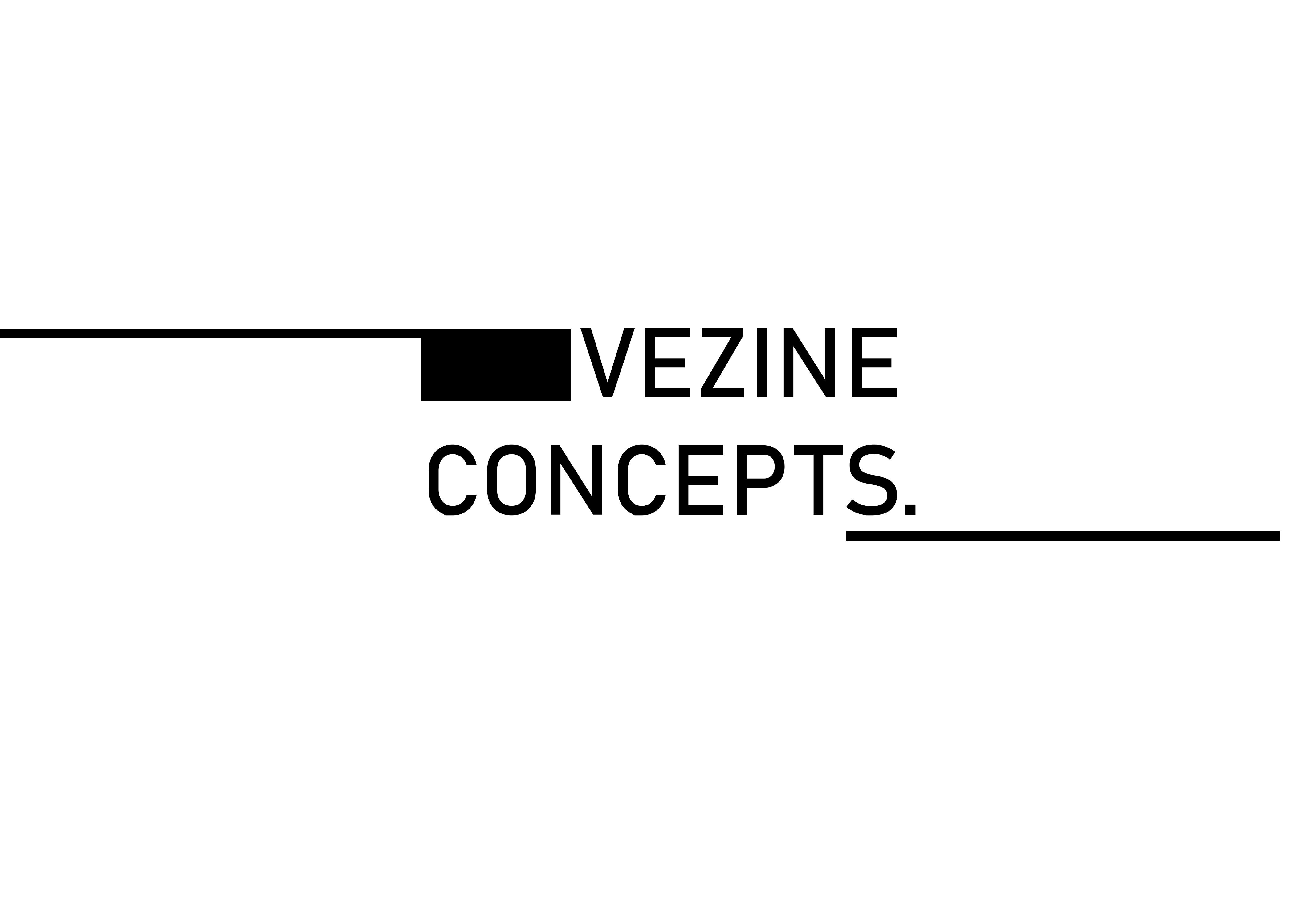 vezineconcepts