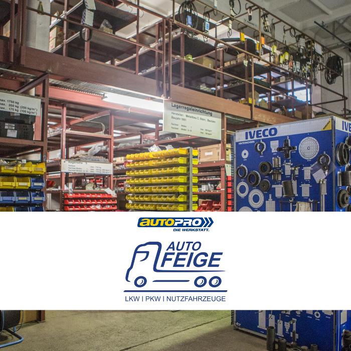 Bild zu Auto Feige GmbH & Co. KG in Bautzen