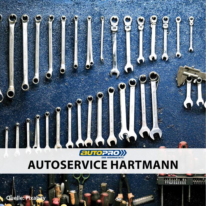 Bild zu Autoservice Hartmann in Dresden