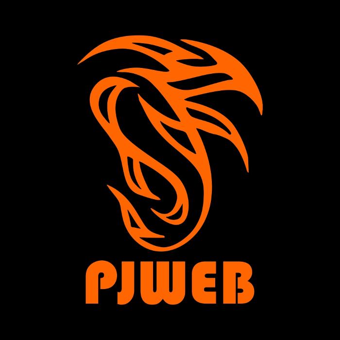 Bild zu PJWEB in Hamburg