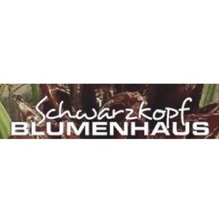 Bild zu Blumenhaus Schwarzkopf in Freigericht