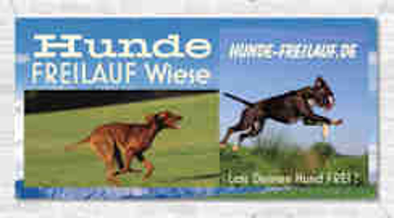 Bild zu Hunde-Freilauf.de in Wesel