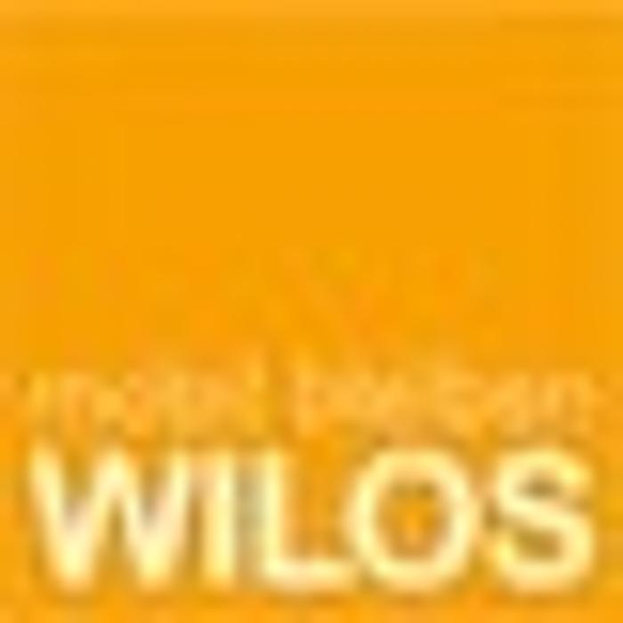 Bild zu WILOS MPU-Beratung in Osnabrück