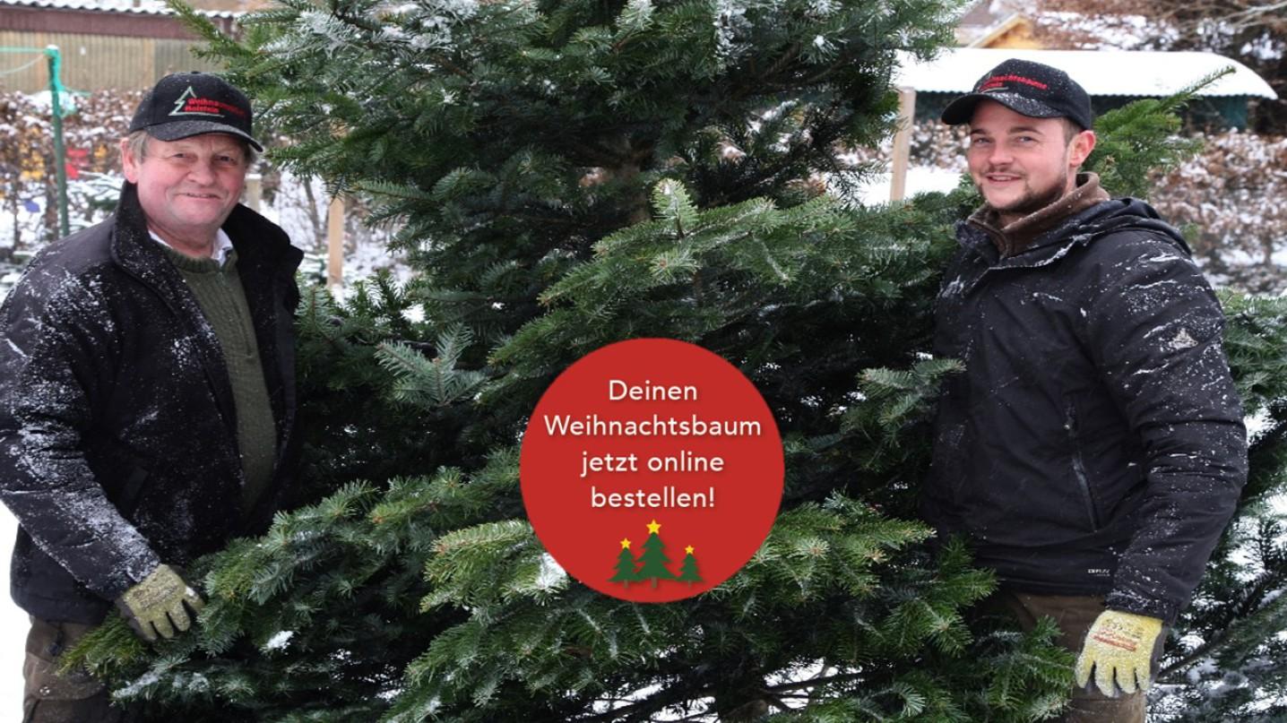 Weihnachtsbaum Onlineshop - Dein Weihnachtsbaum DE
