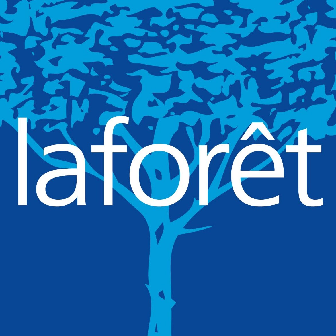 Agence immobilière Laforêt Annecy agence immobilière