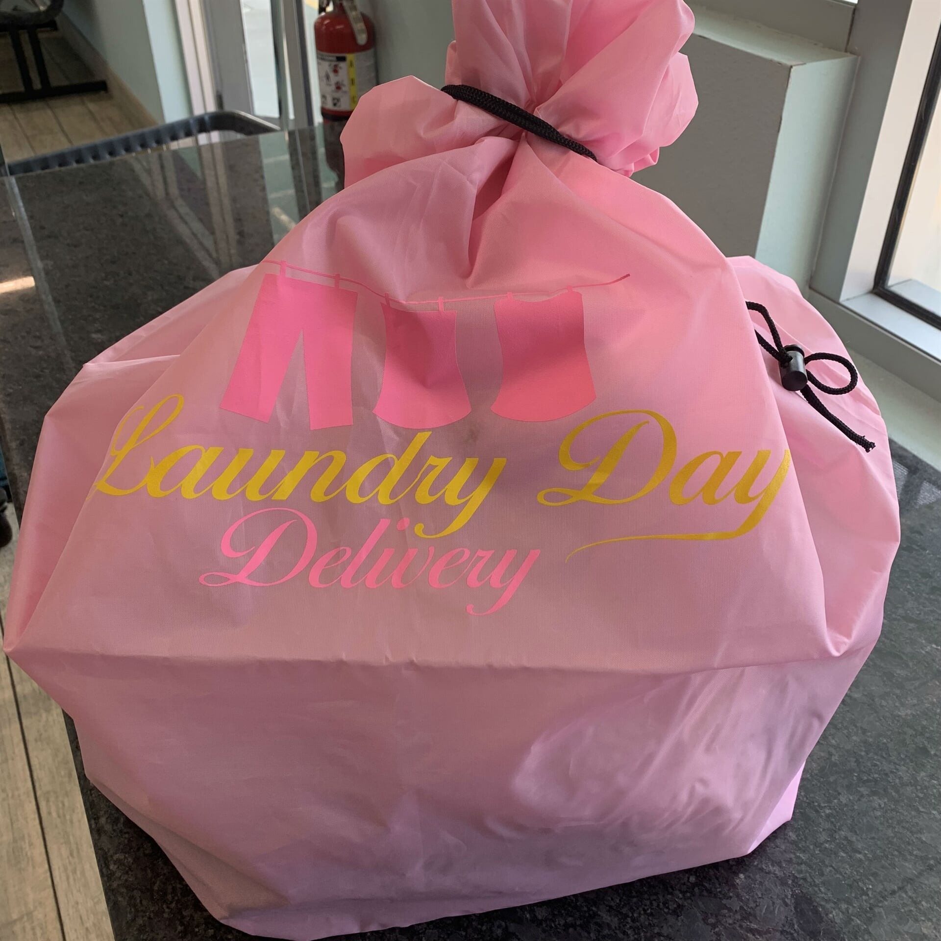 Laundry Day Delivery