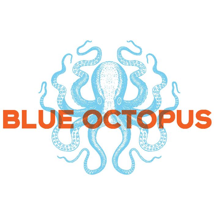 Bild zu Blue Octopus Design in München