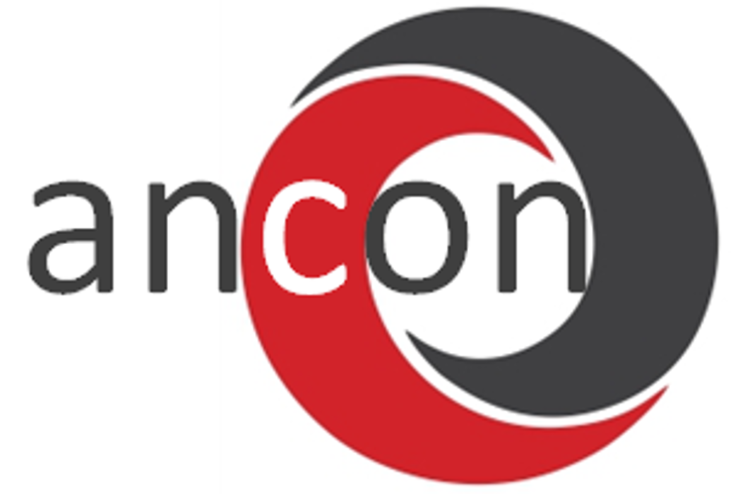 Bild zu Ancon GmbH in Idstein