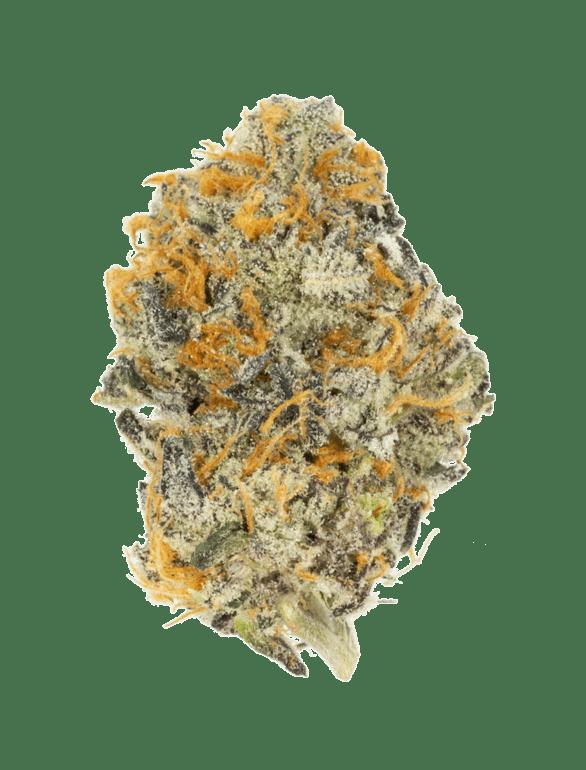 GrassHopper Dispensary