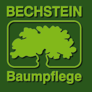 Bild zu Bechstein Baumpflege GmbH in Kriftel