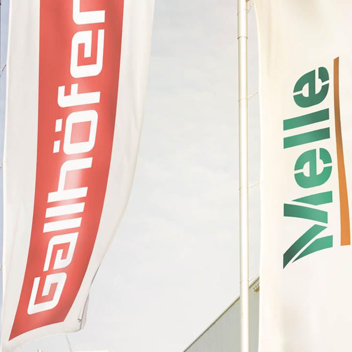 Bild zu Melle Gallhöfer Dach GmbH in Neuss