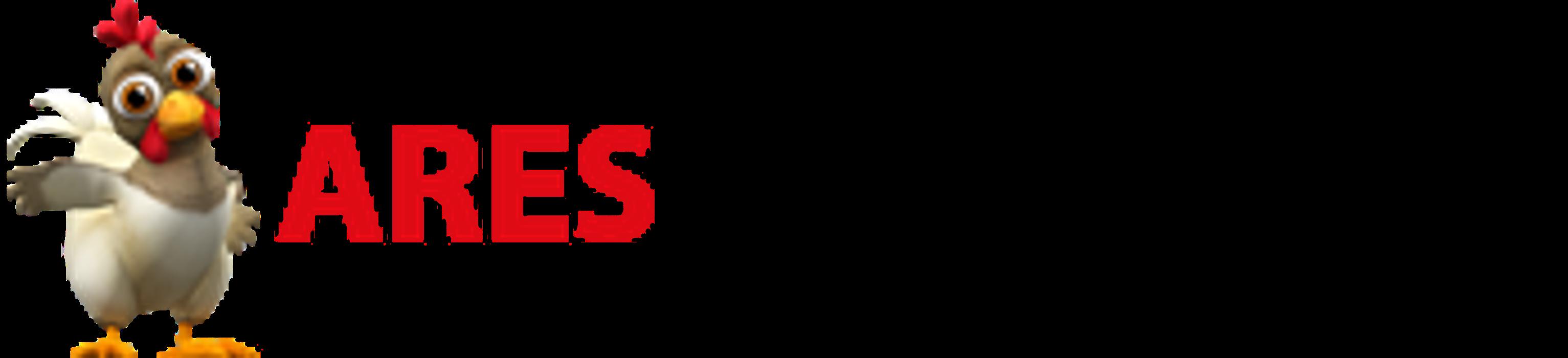 Bild zu Ares Webdesign & IT Dienstleistungen in Gelsenkirchen