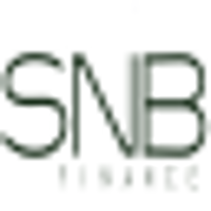 Bild zu SNB Finance GmbH in Berlin