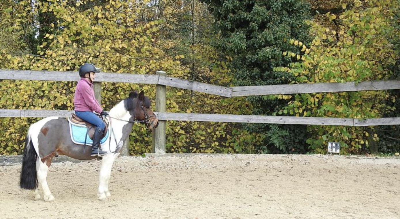 Laurence de Rham équitation