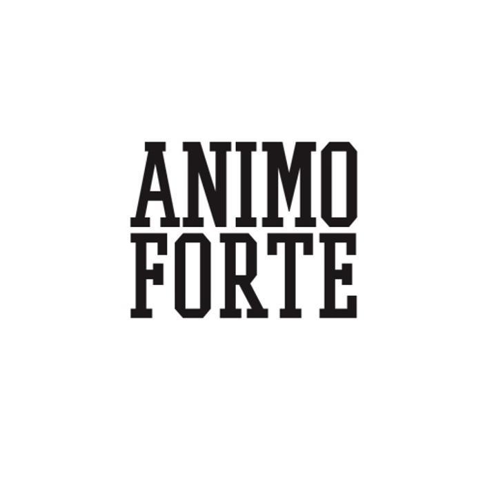 Bild zu Animo Forte Coaching in Braunschweig