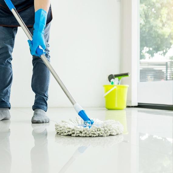 Carpet Cleaning Mejia