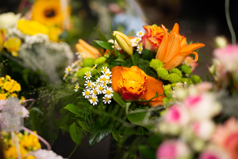 Blumen Plettig KG - Voitsberg