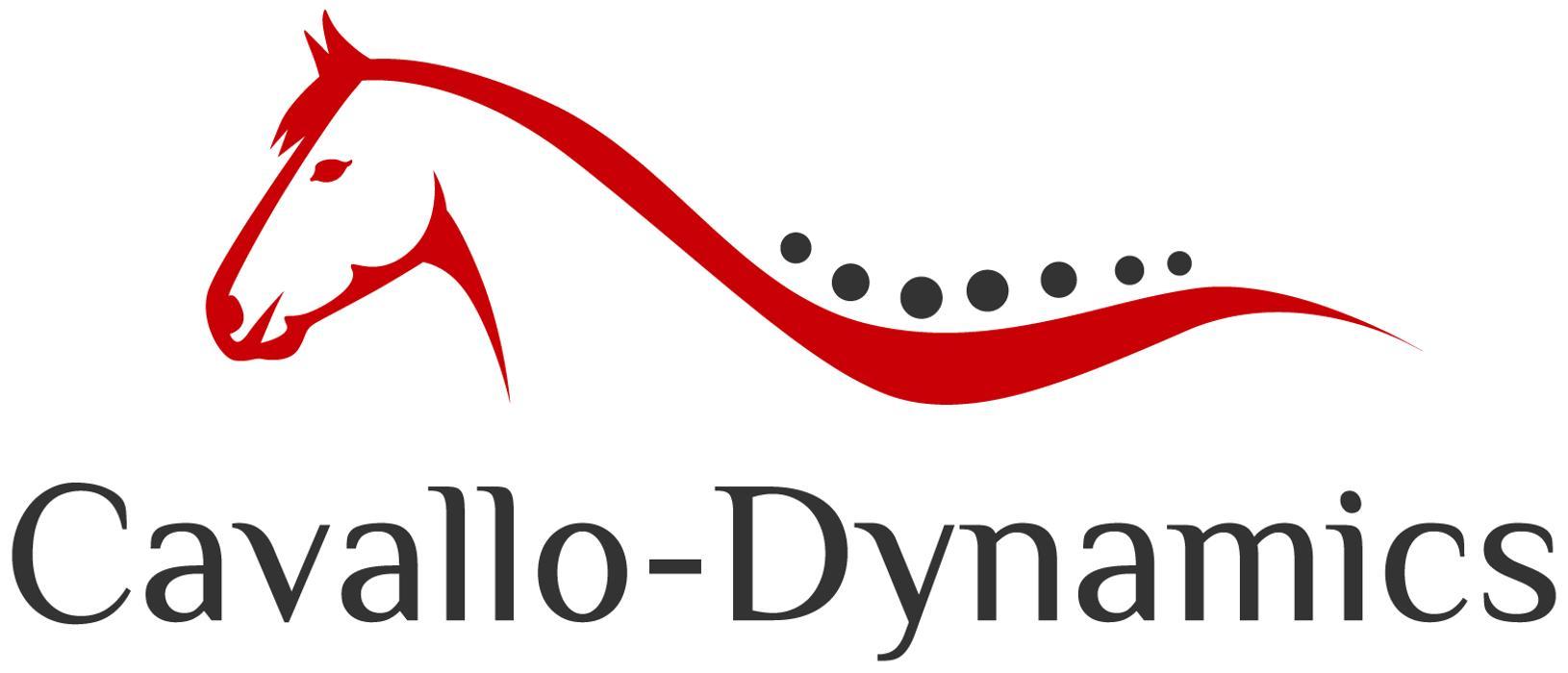 Bild zu Cavallo-Dynamics in Bergkamen