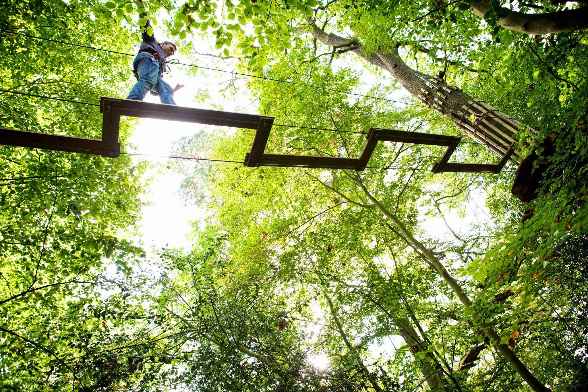 Go Ape Zipline And Adventure Park Mccandless Pa 15101 800 971 8271 Showmelocal Com