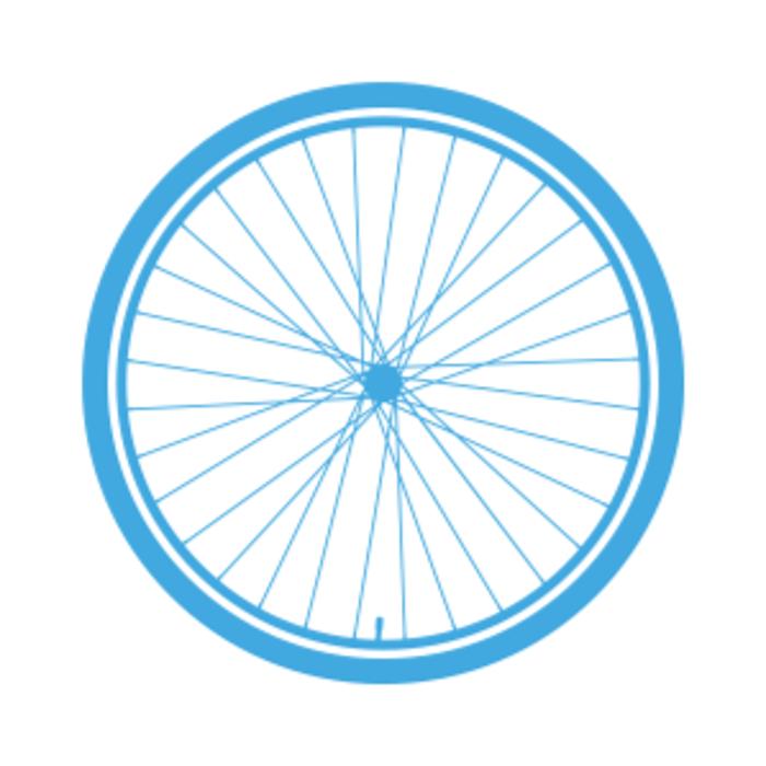 Bild zu haveabike - dein Rennrad und Gravel Bike Store in Schwabing in München