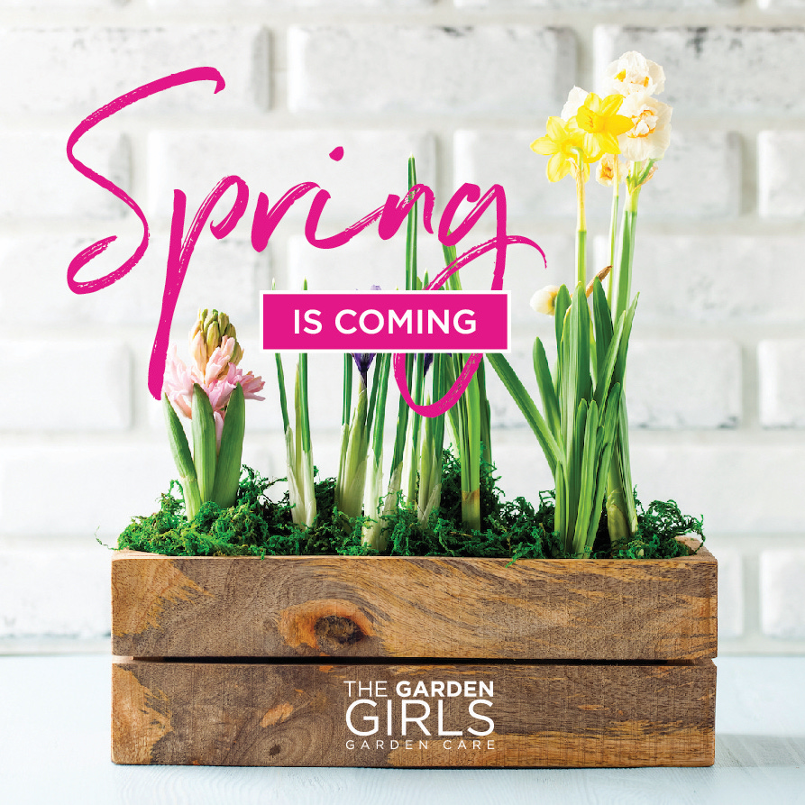 The Garden Girls