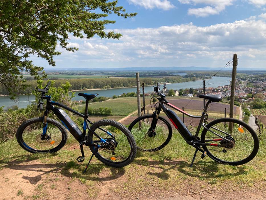 Bild zu E-Bike-Mainz in Mainz