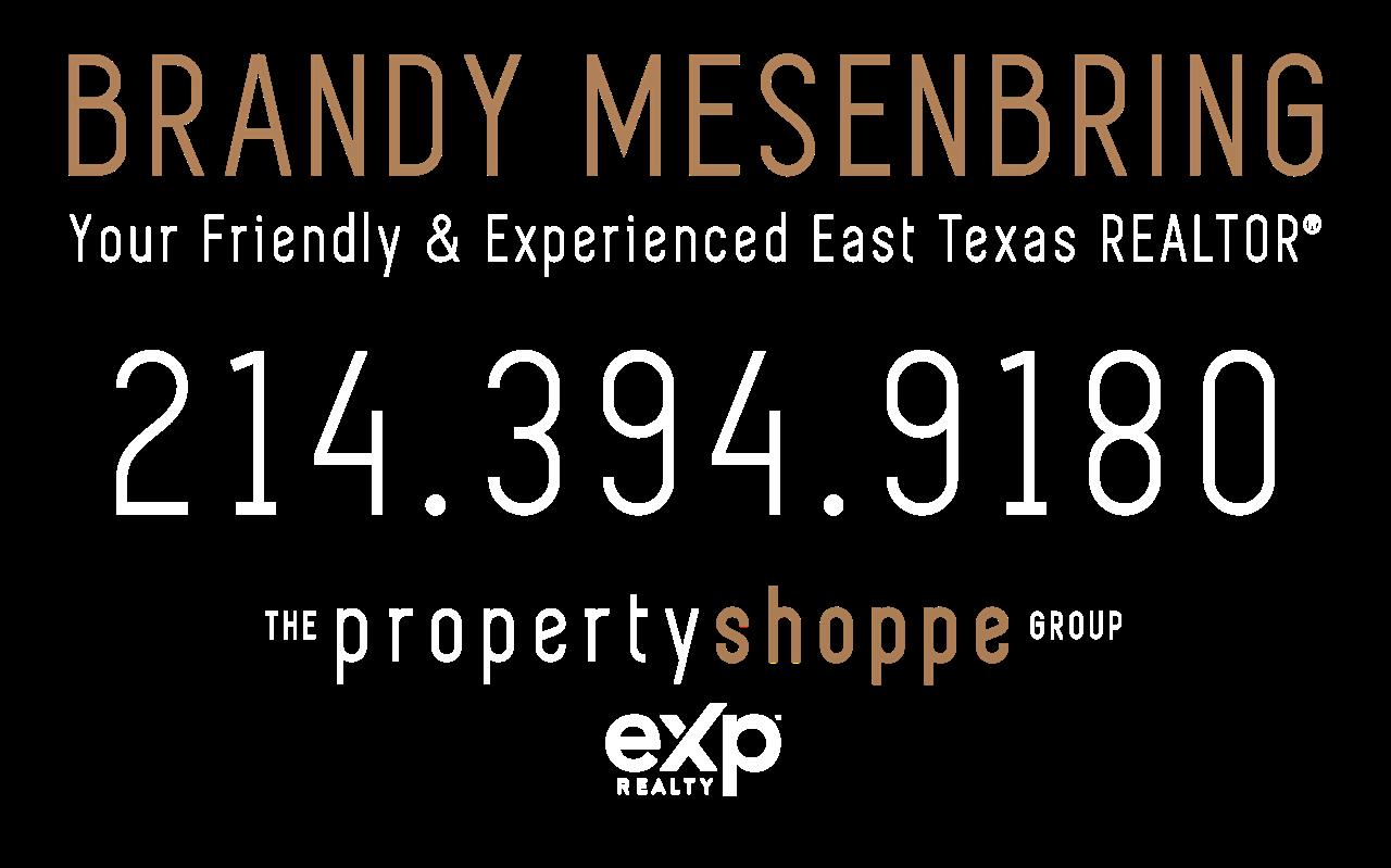 Brandy Mesenbring, REALTOR