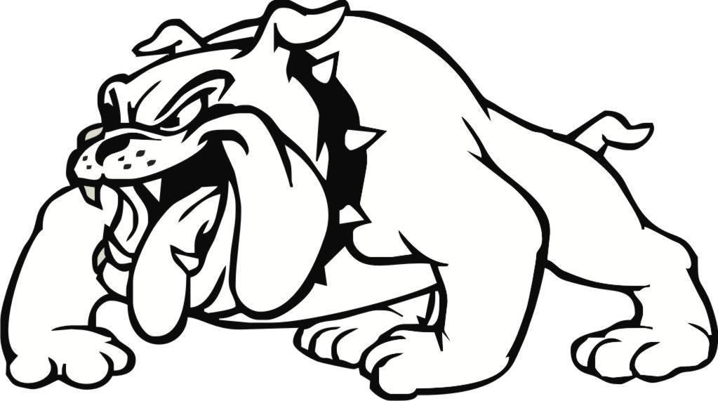 Bulldog Pressure Washing