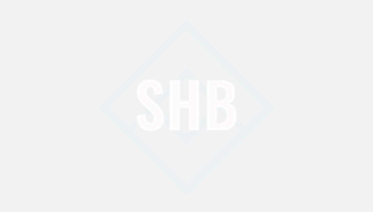 Bild zu SHB Dienstleistungen e.K. in Zittau