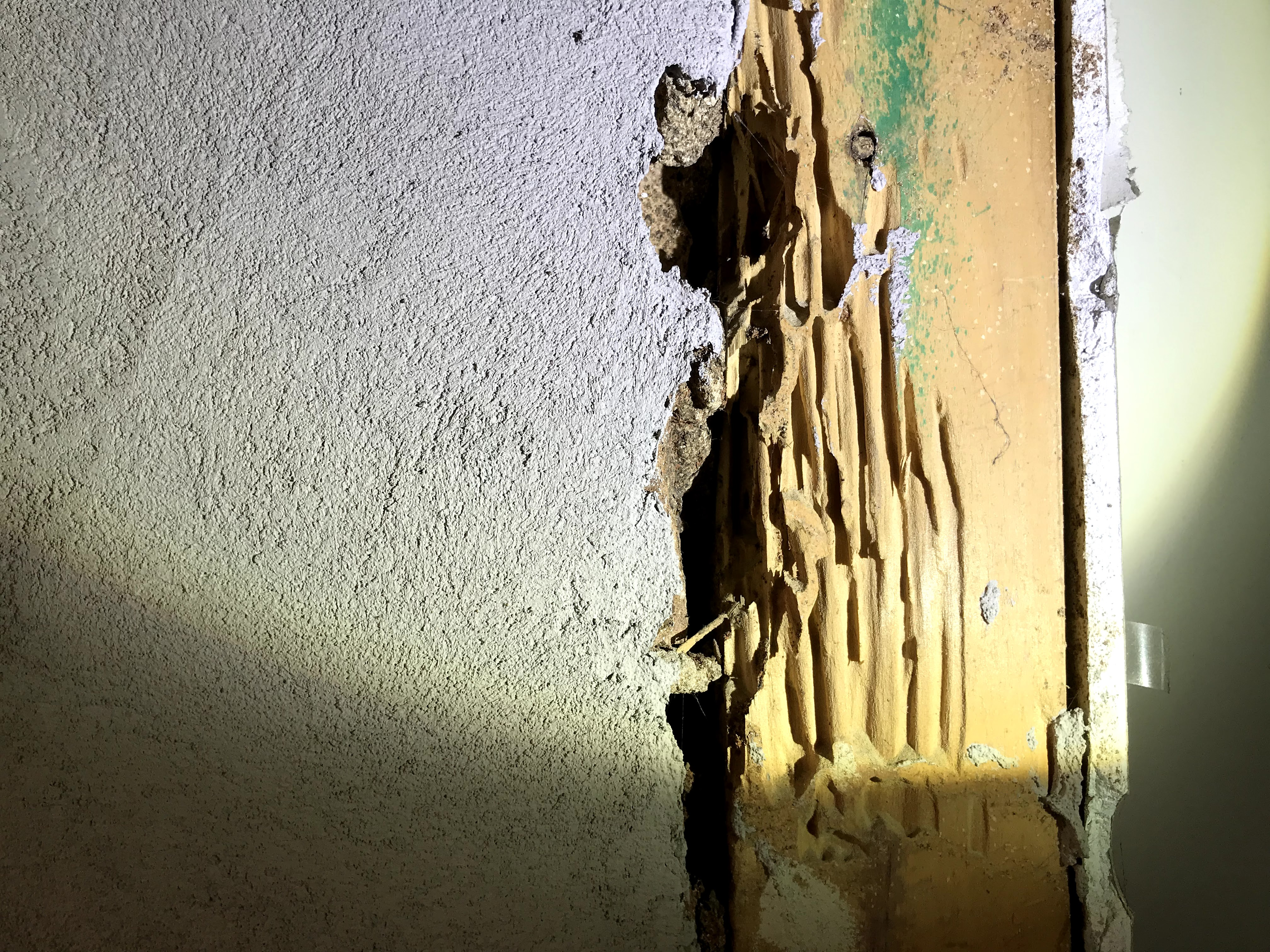 Jim's Termite & Pest Control Gwelup