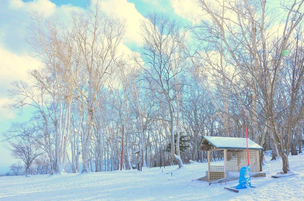 J Holmes Lawn Care & Snow Removal LLC