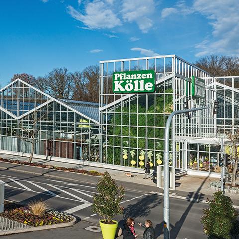 Pflanzen Kolle Gartencenter Gmbh Co Kg Stuttgart