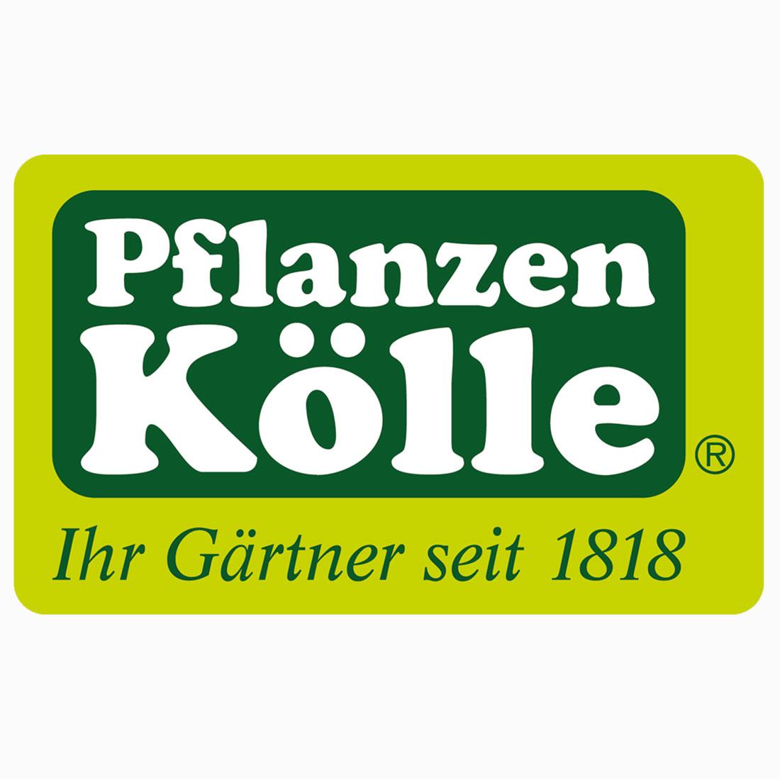 Pflanzen-Kölle Gartencenter GmbH & Co. KG Stuttgart